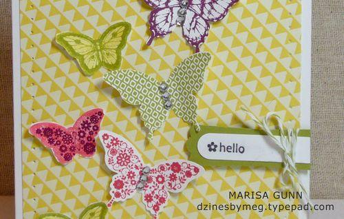 Butterflies_2_Web
