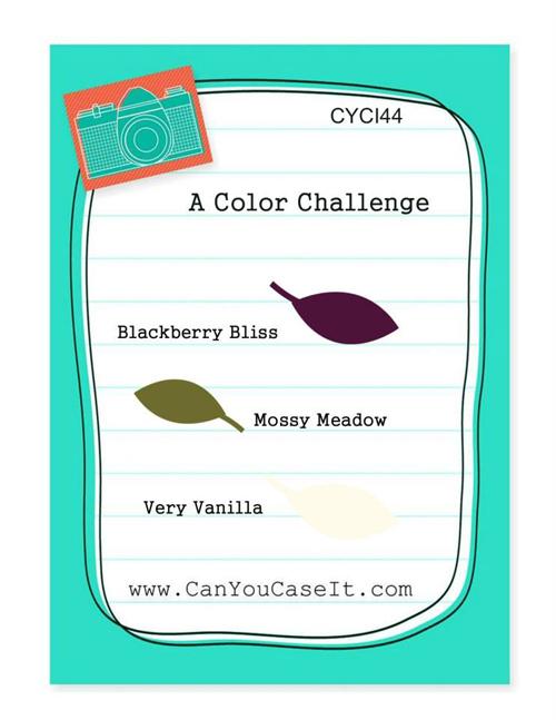 CYCI-44-Color-Challenge