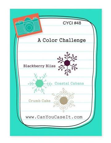 CYCI48-Color-Challenge