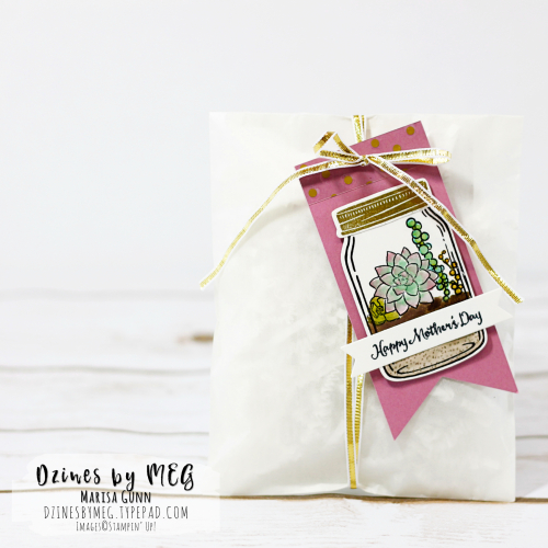Gift Pacakaging featuring the Oh So Succulent stamp set from Stampin' Up! by Marisa Gunn