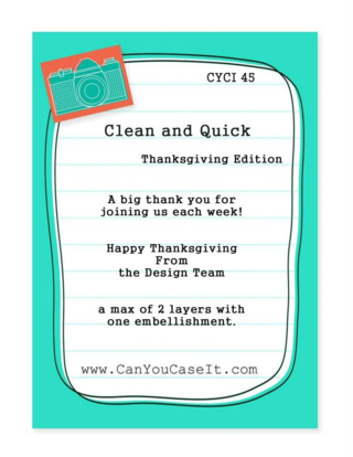 CYCI-45-Quick-Clean