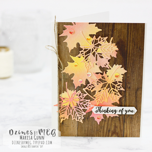 Thinking of You card featuring the Colorful Seasons Photopolymer Bundle from Stampin Up by Marisa Gunn